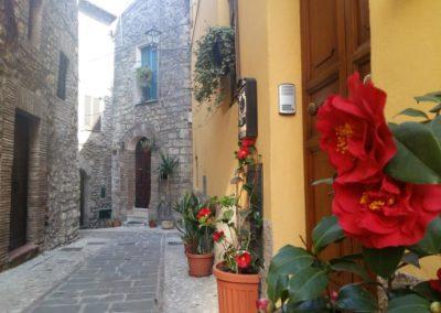 Via Colonna